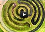 movie; LANDSCHAPSKUNST IN NEDERLAND VAN BOVEN