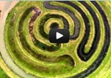 film; Landschapskunst in VPRO's Nederland van Boven